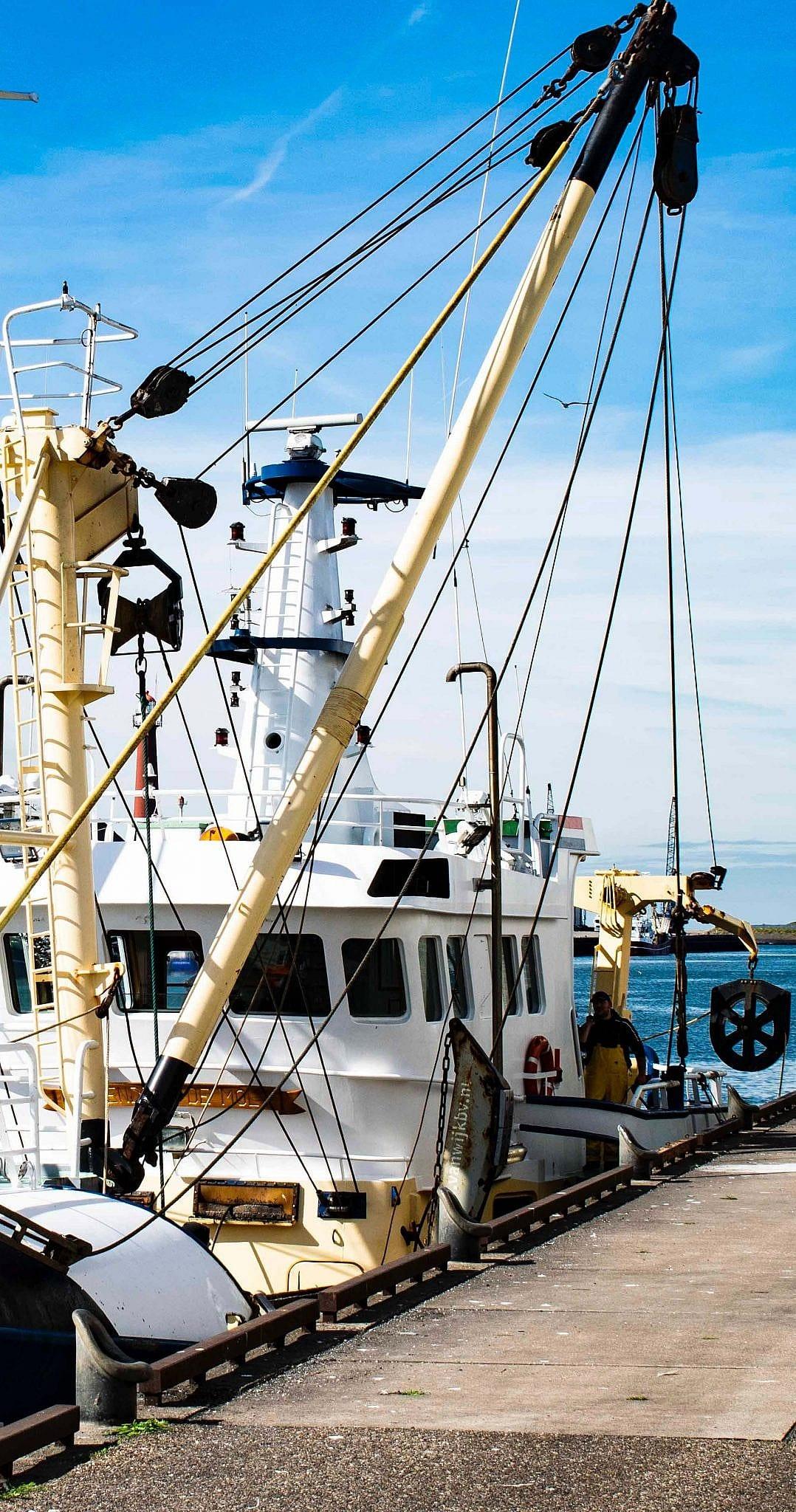 Fiskerbåd i havnen i Hanstholm